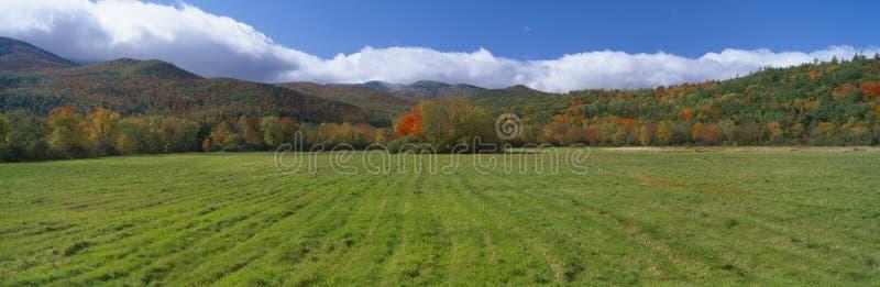 De Bergen van Adirondack stock afbeelding