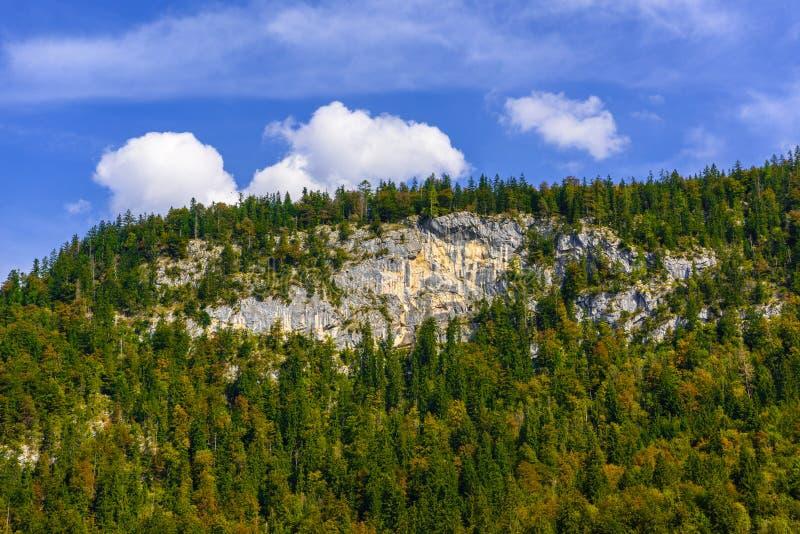De bergen van alpen die met bos, Koenigssee, Konigsee, het Nationale Park van Berchtesgaden, Beieren, Duitsland worden behandeld royalty-vrije stock foto