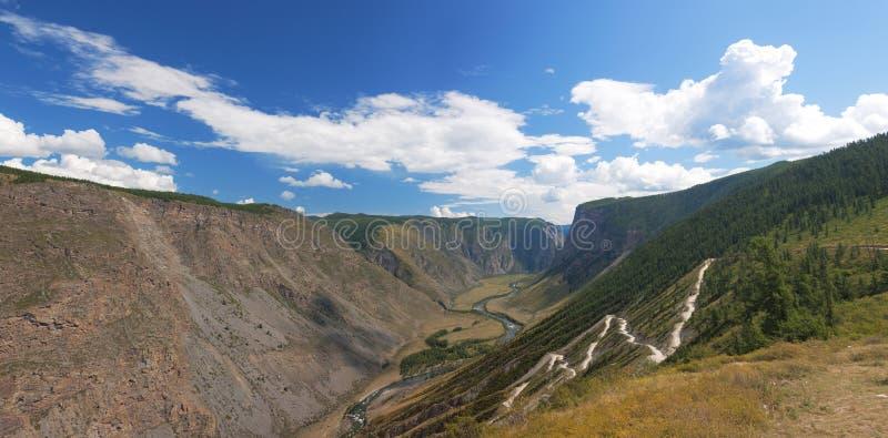 De bergen van Altai. Het landschap van de zomer royalty-vrije stock afbeelding
