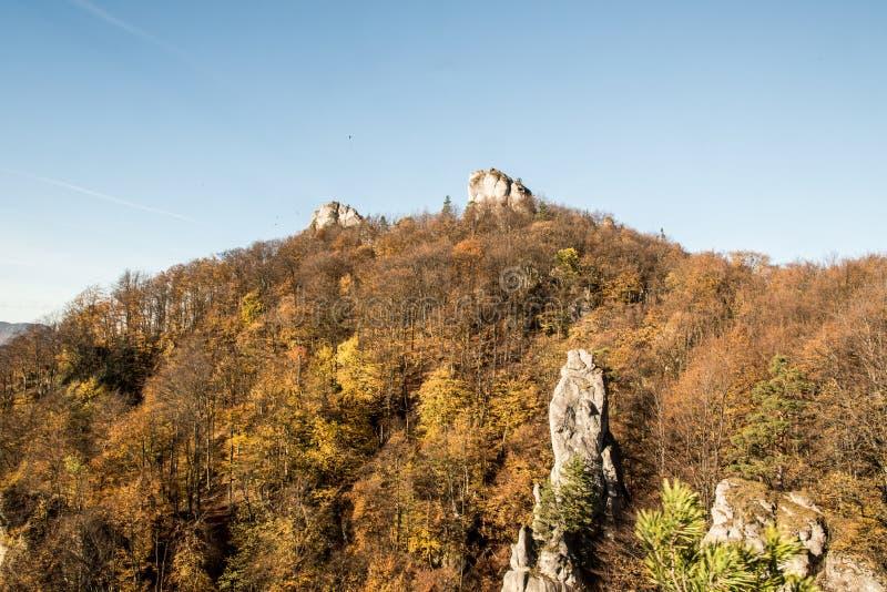 De bergen van Autumn Sulovske skaly met zandsteenrotsen, kleurrijke bos en duidelijke hemel in Slowakije stock afbeelding