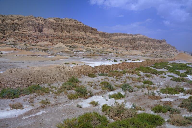 De Bergen van de hemel, Xinjiang, China royalty-vrije stock fotografie