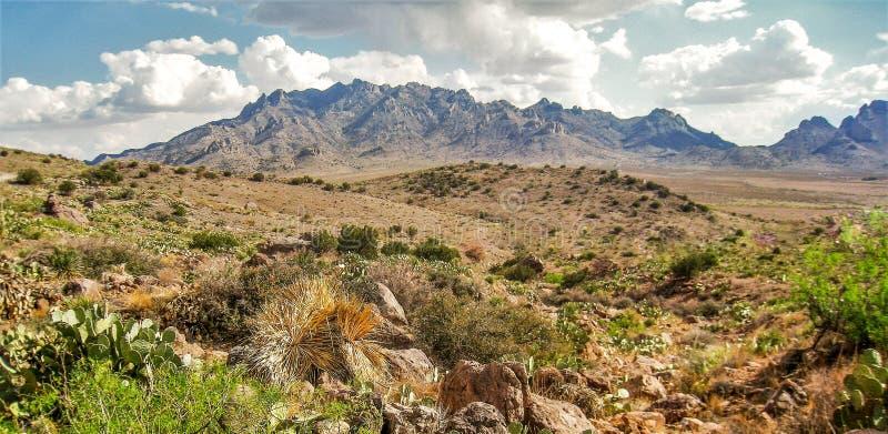 De Bergen van Florida dichtbij Deming, New Mexico stock foto's