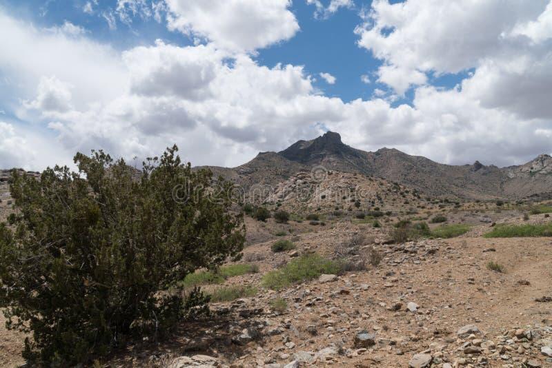 De Bergen van Florida toneel, New Mexico stock foto