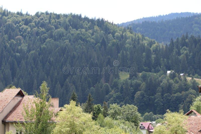 De bergen van de Karpaten zijn niet zo hoog maar zeer majestueus stock foto's