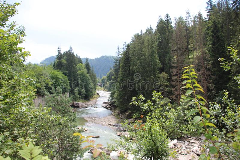 De bergen van de Karpaten zijn niet zo hoog maar zeer majestueus, en het water is het leven in deze bergen royalty-vrije stock afbeeldingen