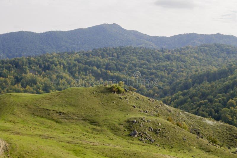 De bergen van Roemenië stock afbeelding