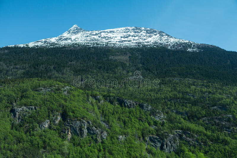 De Bergen van Skagway royalty-vrije stock afbeelding