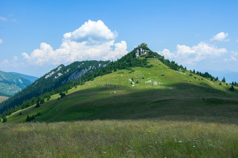 De Bergen van Slowakije - de Zomer in Velka Fatra royalty-vrije stock fotografie