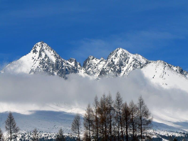De bergen van Tatra in de winter royalty-vrije stock fotografie