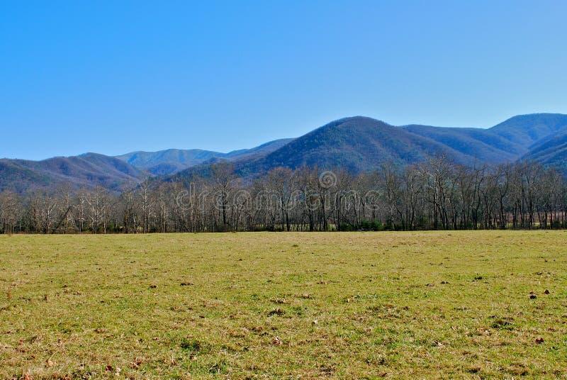 De bergen van Tennessee royalty-vrije stock afbeelding