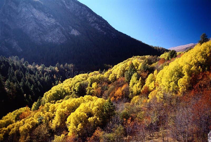 De bergenkleuren van de herfst royalty-vrije stock afbeeldingen