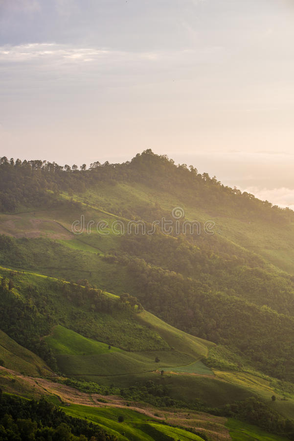 De bergheuvel in het zonlicht stock afbeelding