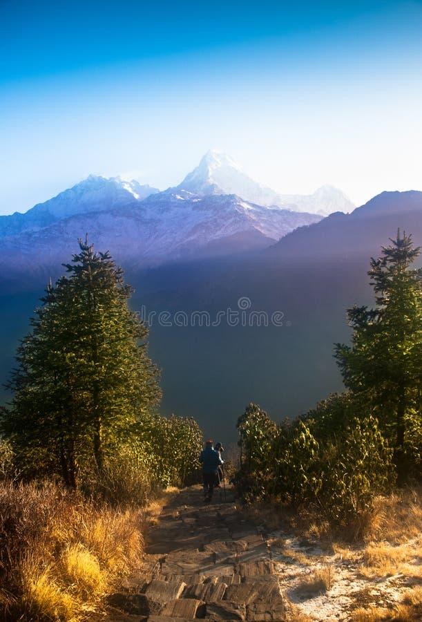 De bergketen van Annapurna royalty-vrije stock afbeeldingen
