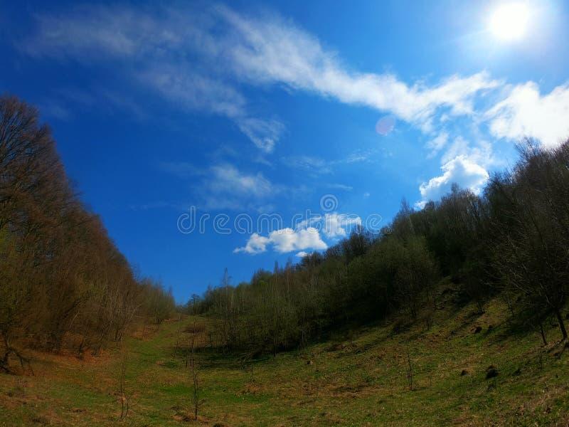 De berglandschap van de zomer stock foto's