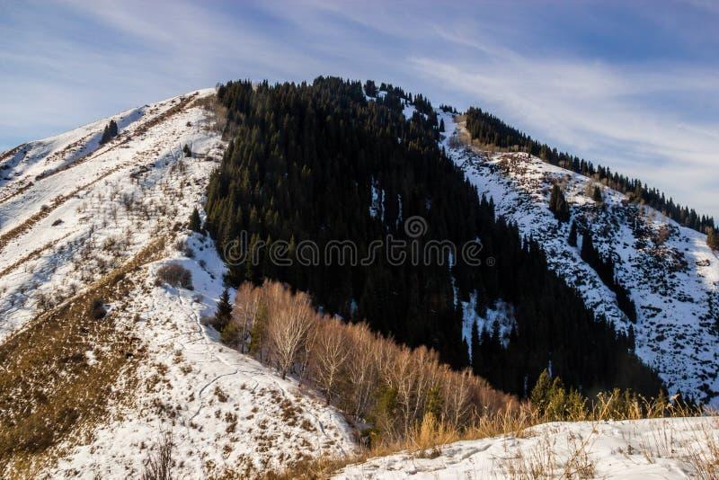 De berglandschappen stock afbeelding