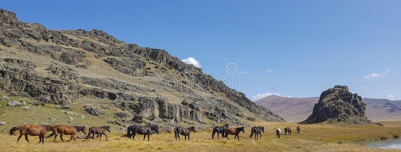 De bergmeer van bergaltai stock foto