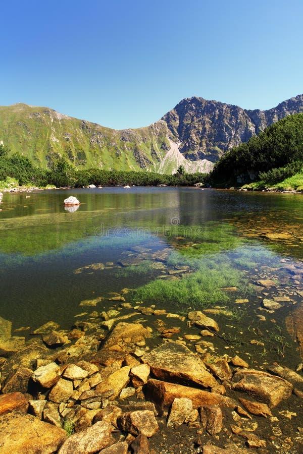 De bergmeer van Slowakije - Rohacske-plesa royalty-vrije stock afbeeldingen