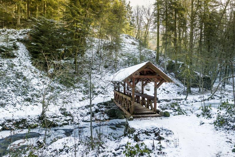 De bergrivier in canion in baden-Baden stock afbeelding