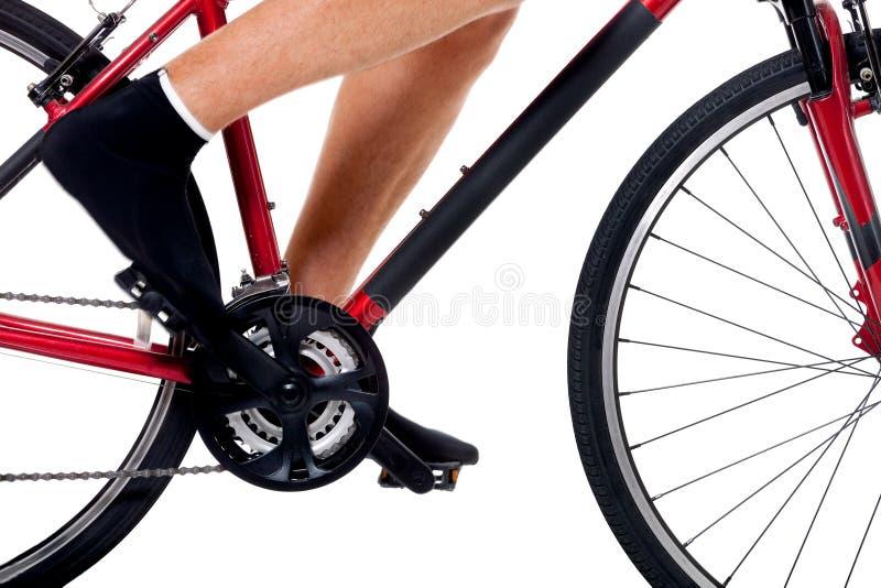 De Berijdende Fiets van de fietser royalty-vrije stock foto's