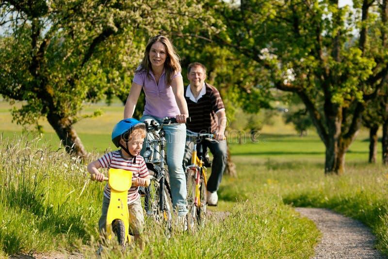 De berijdende fietsen van de familie in de zomer stock afbeelding