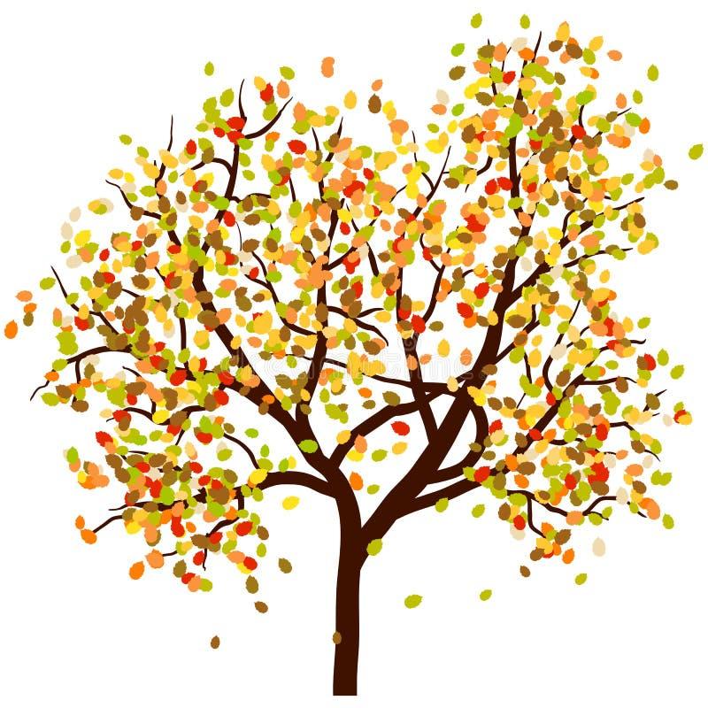 De berk van de herfst stock illustratie