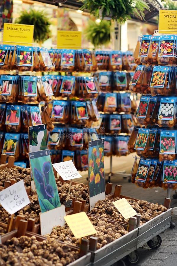 De beroemde de bloemmarkt Bloemenmarkt van Amsterdam Tulip Bulbs Calla lelieswortels royalty-vrije stock afbeeldingen