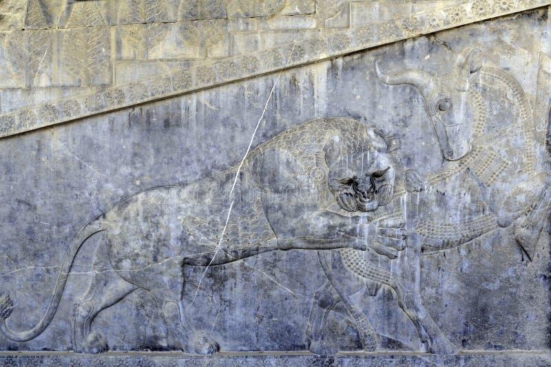 De beroemde gravure van de bashulp van een leeuw die een stier in Persepolis-de Plaats van de Werelderfenis jagen stock fotografie