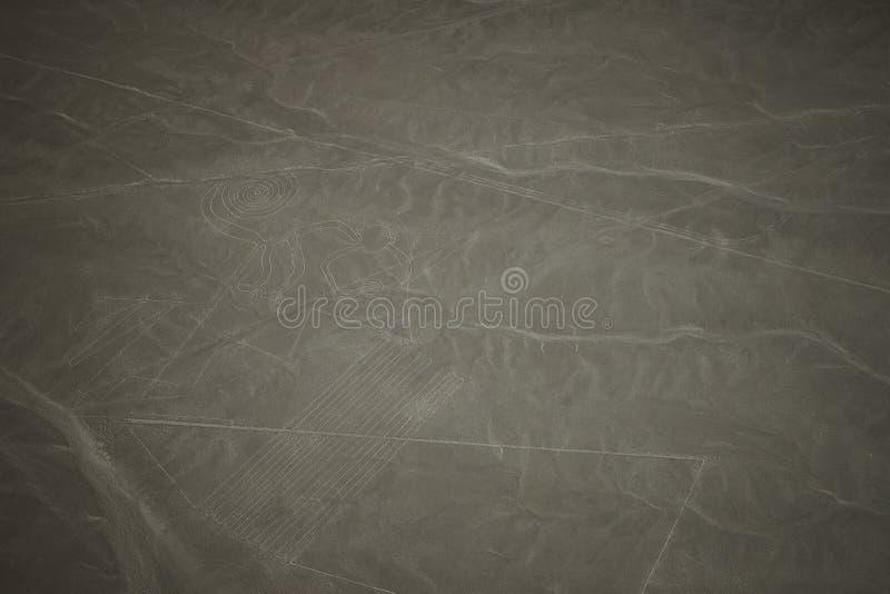 De beroemde Nazca-Lijnen in Peru, hier u kunnen het cijfer van een astronaut zien die zijn hand golven aan u De beroemde Nazca-Li stock afbeeldingen