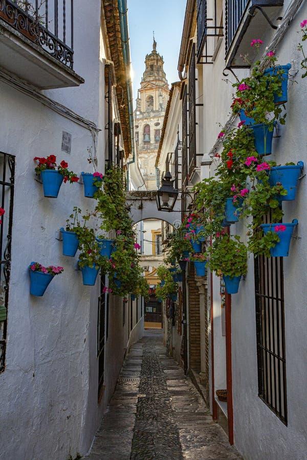 De beroemde smalle straat van Cordoba, Las Flores genaamd, met het oog op de klokkentoren van de moskee van Cordoba royalty-vrije stock afbeelding