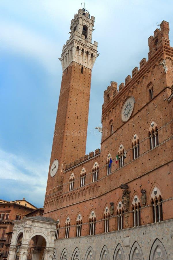 De beroemde toren in Siena stock afbeelding