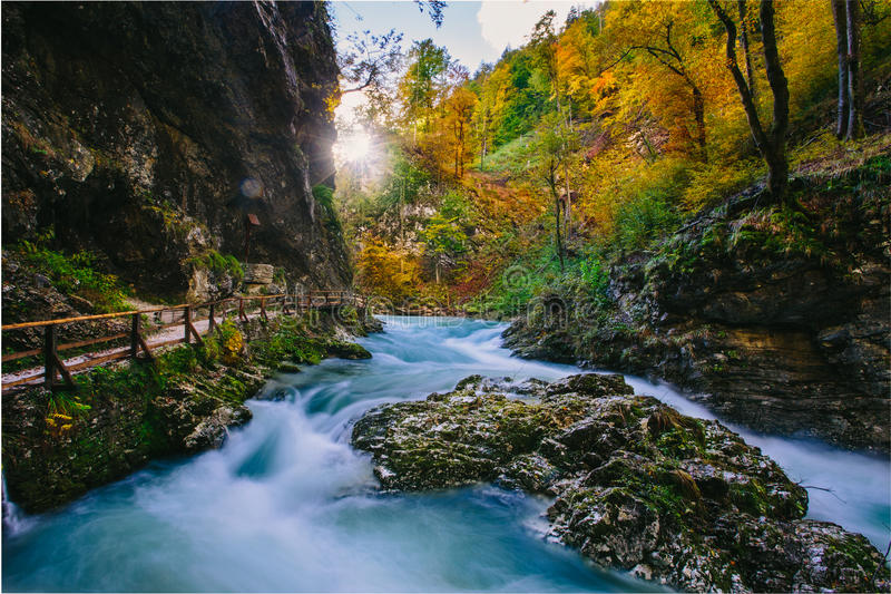 De beroemde Vintgar-Afgetapte kloofcanion met houten klopjes, Triglav, Slovenië, Europa stock foto