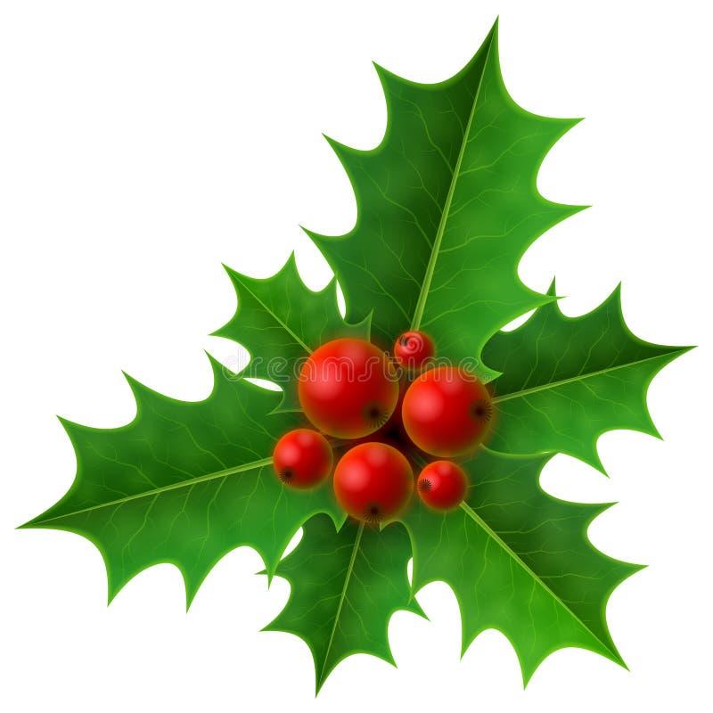De bes van de Kerstmishulst op witte achtergrond vector illustratie