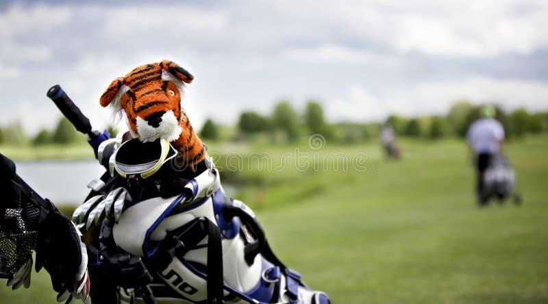 De bescherming GLB van de tijger op golfclub royalty-vrije stock fotografie