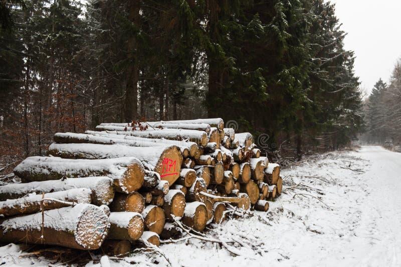 De besnoeiing registreert brandhout gestapeld omhoog opgestapeld die hout in het bos in sneeuw wordt behandeld stock fotografie