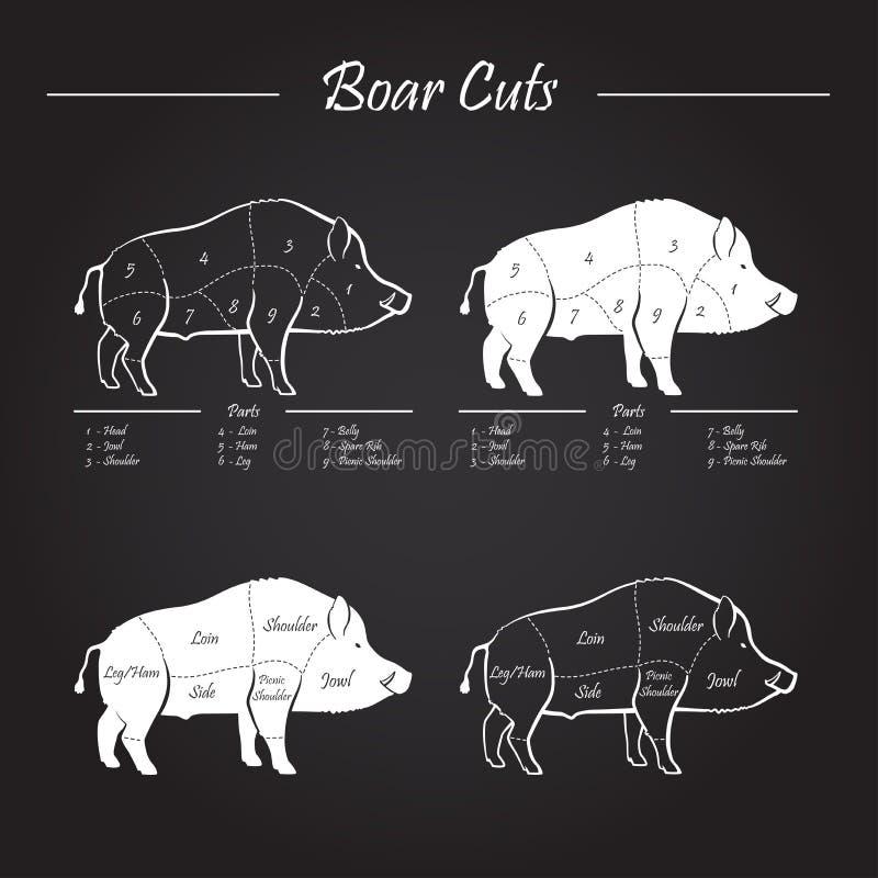 De besnoeiingsdiagram van het beervlees - elementenbord stock illustratie