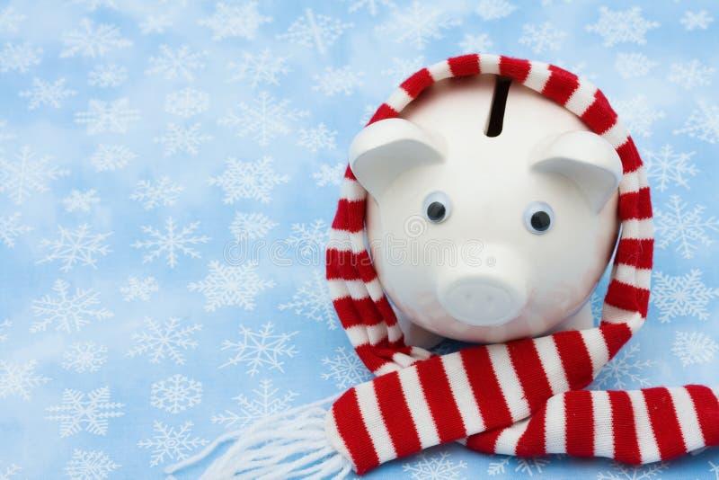 De Besparingen van Kerstmis stock foto's