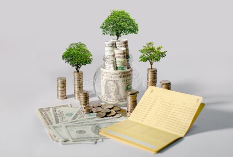 De Besparingsgeld van de geldgroei Het hogere getoonde concept van boommuntstukken het kweken van zaken stock afbeelding