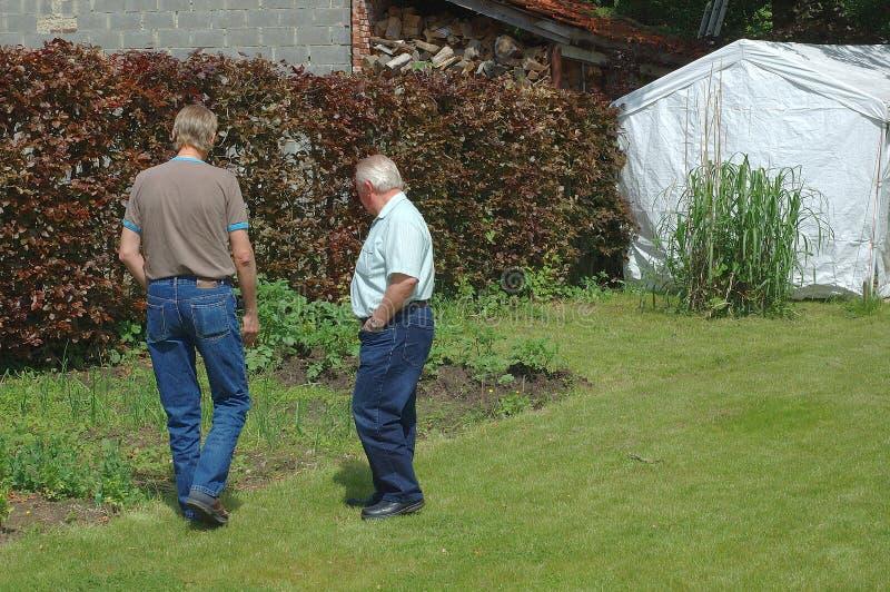 De bespreking van de tuin stock fotografie