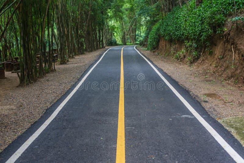 De bestrating van de asfaltweg bij nationaal MAI van parkchiang stock foto