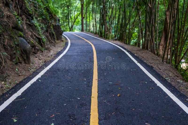 De bestrating van de asfaltweg bij nationaal MAI van parkchiang stock fotografie