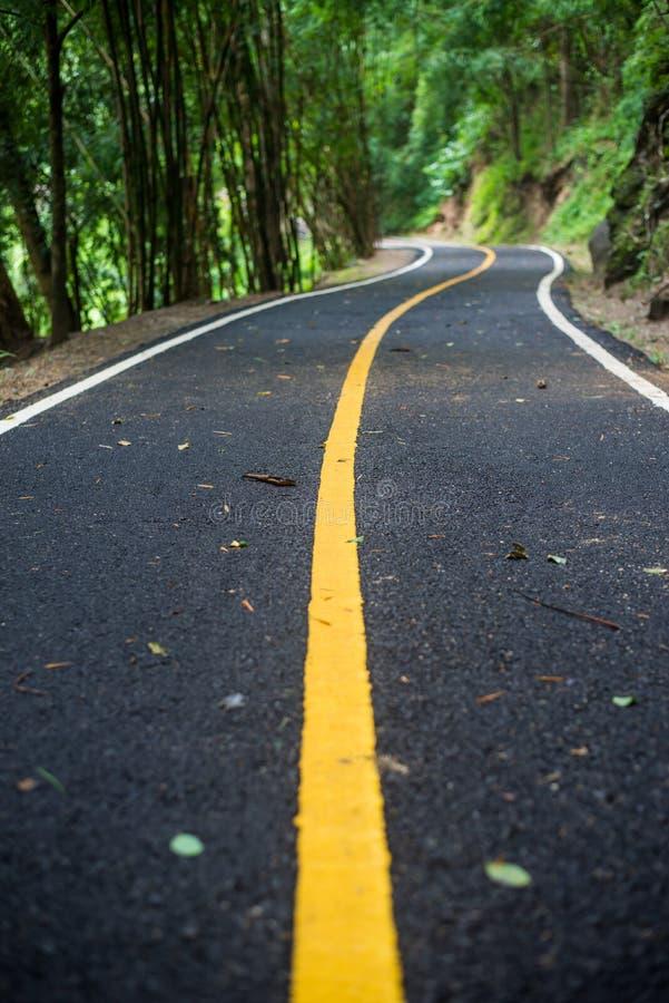 De bestrating van de asfaltweg bij nationaal MAI van parkchiang royalty-vrije stock foto
