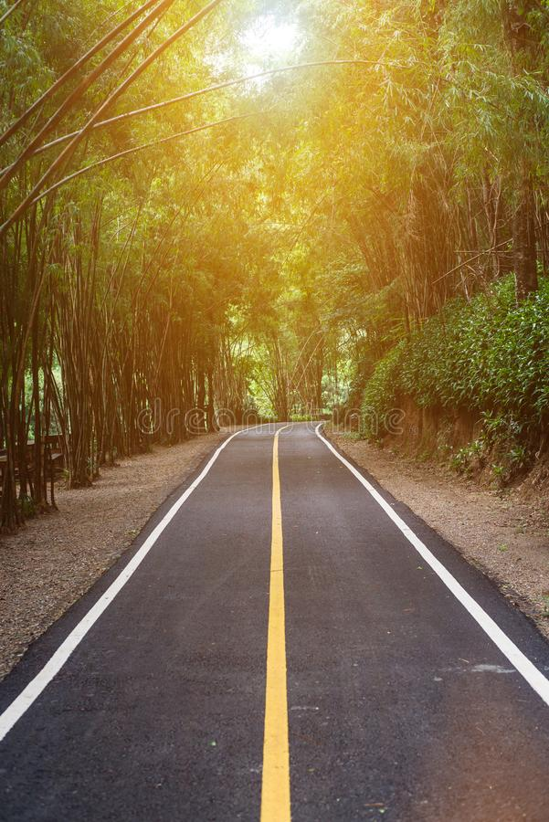 De bestrating van de asfaltweg bij nationaal MAI van parkchiang royalty-vrije stock afbeelding