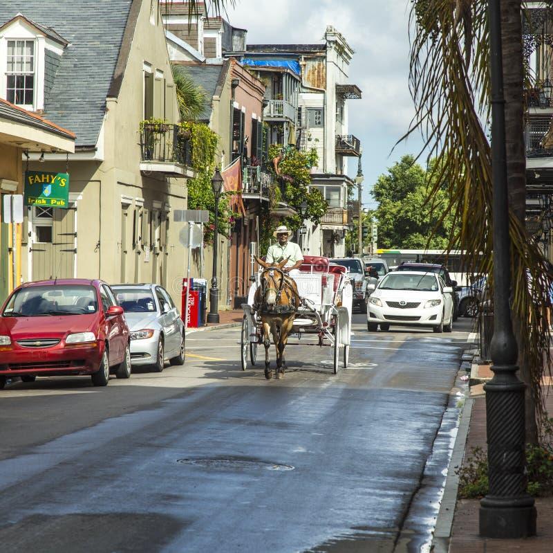De bestuurdersritten van de paardkar aan Jackson stock afbeelding