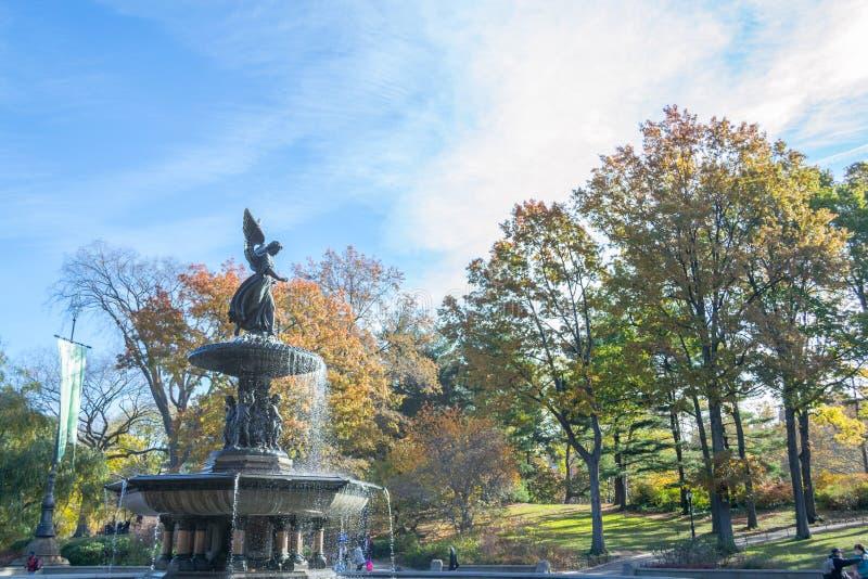 De Bethesda-fontein in een de herfstochtend stock afbeeldingen