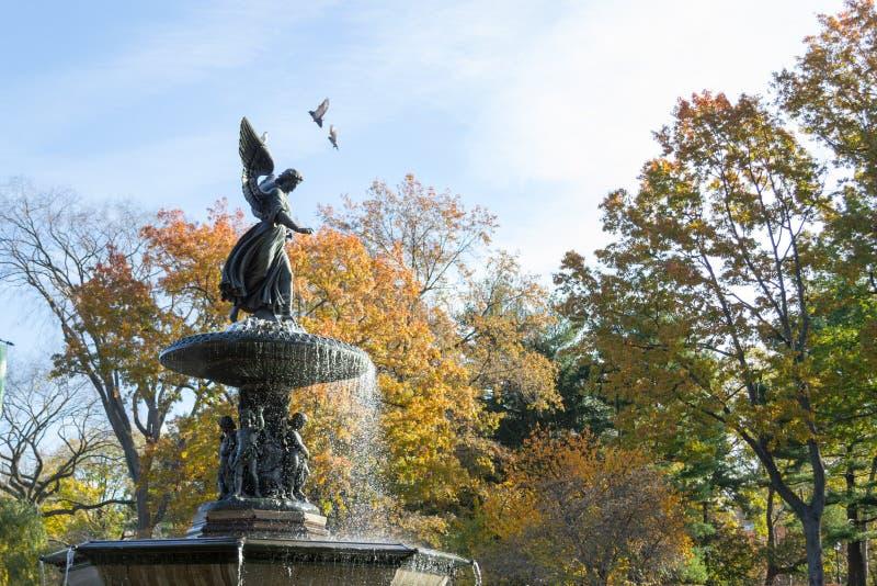 De Bethesda-fontein in een de herfstochtend royalty-vrije stock foto