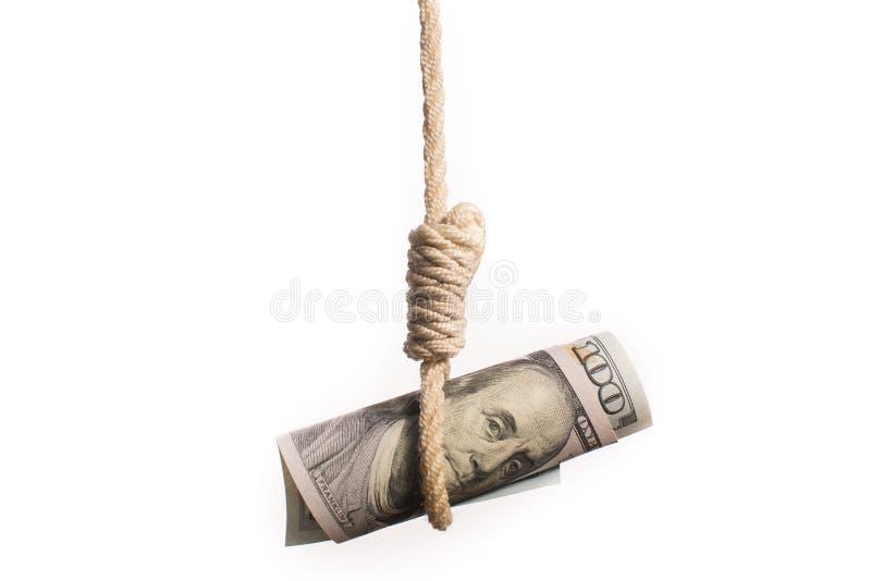 De beul van de dollarrekening royalty-vrije stock foto