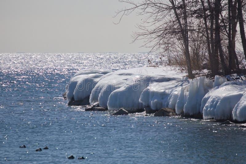 De bevroren oever van Toronto meer stock afbeeldingen