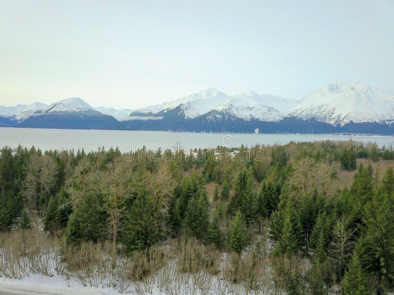 De bevroren scheepswerf van Alaska stock afbeeldingen