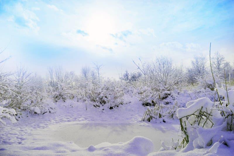 De bevroren vijver, Rusland stock afbeelding