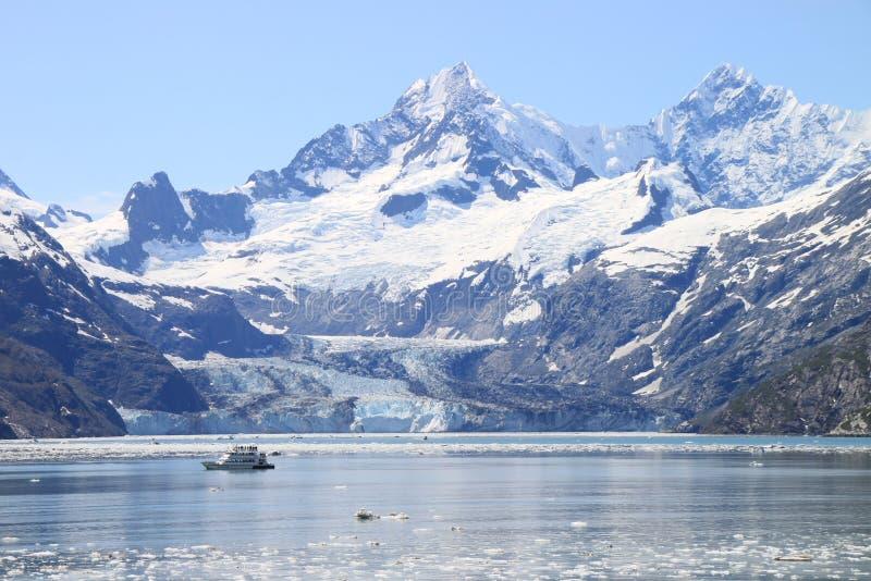 De bewonderende Baai van de Gletsjer stock foto